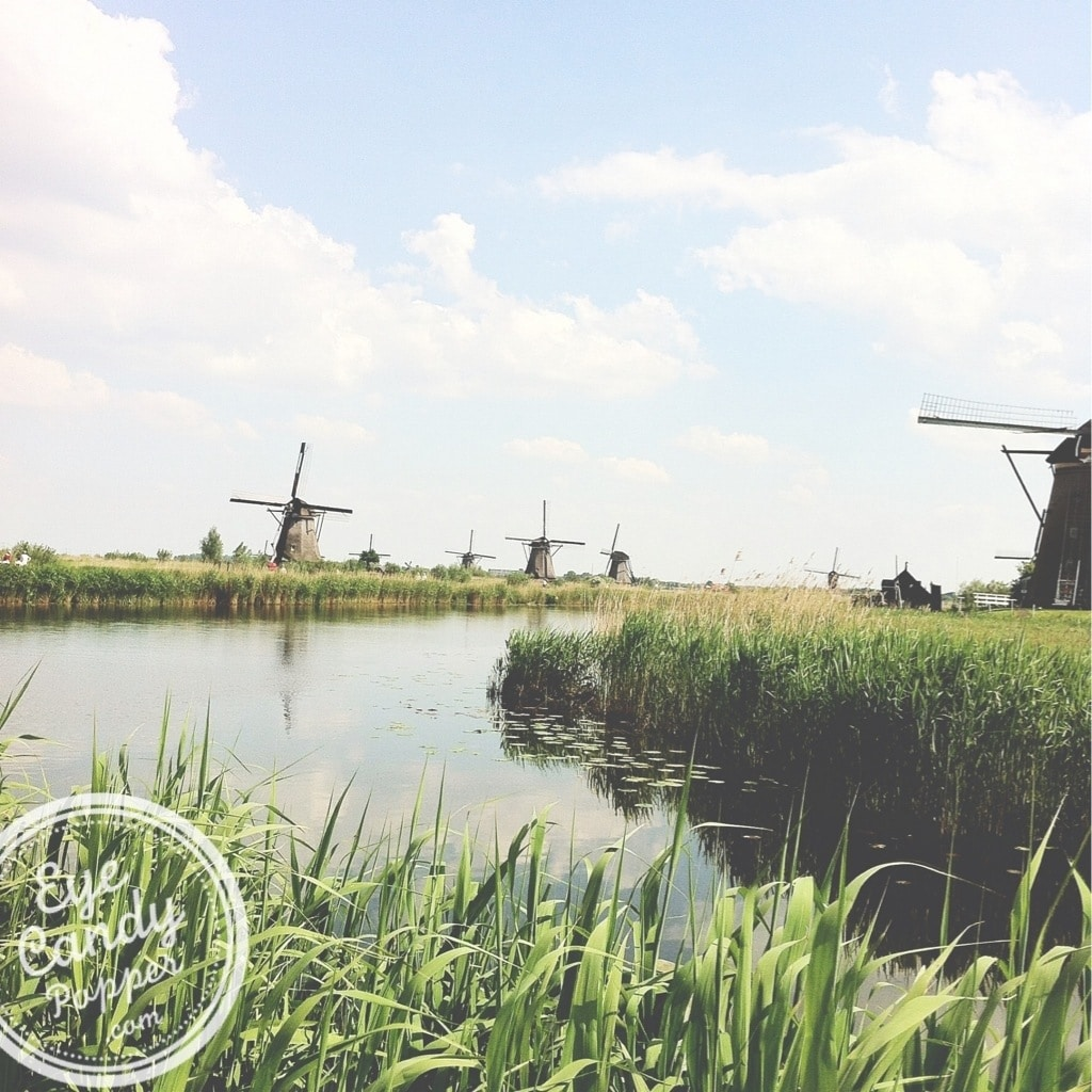 many windmills in Kinderdjyk Holland