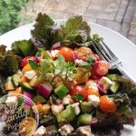 Greek salad with yellow zucchini and fresh oregano